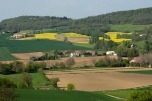 Terrein (11) - View